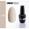 N433 Gel polish 15 ml