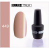 N449 Gel polish 15 ml