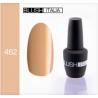 N462 Gel polish 15 ml